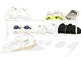 shoe rack study