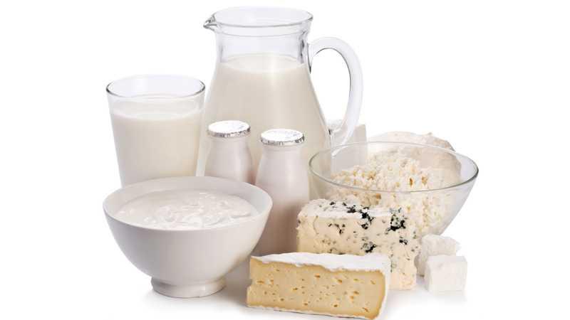 latte  e i suoi derivati latticini