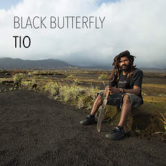 Tio Black Butterfly.png