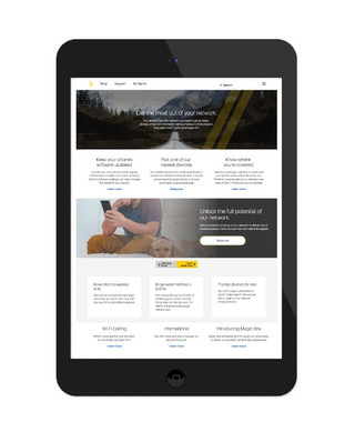 Sprint Network Landing Page