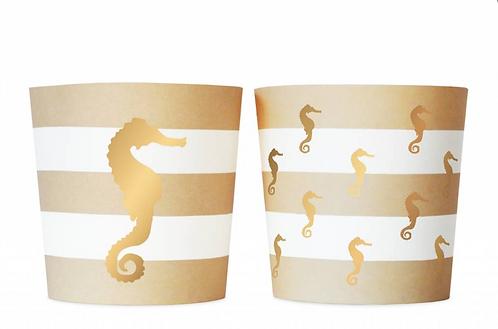 Food Cup Preppy Seashore