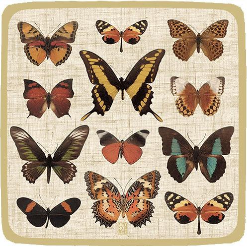 Piatti Butterfly