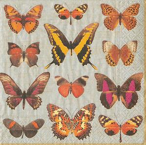 Tovagliolo Butterfly
