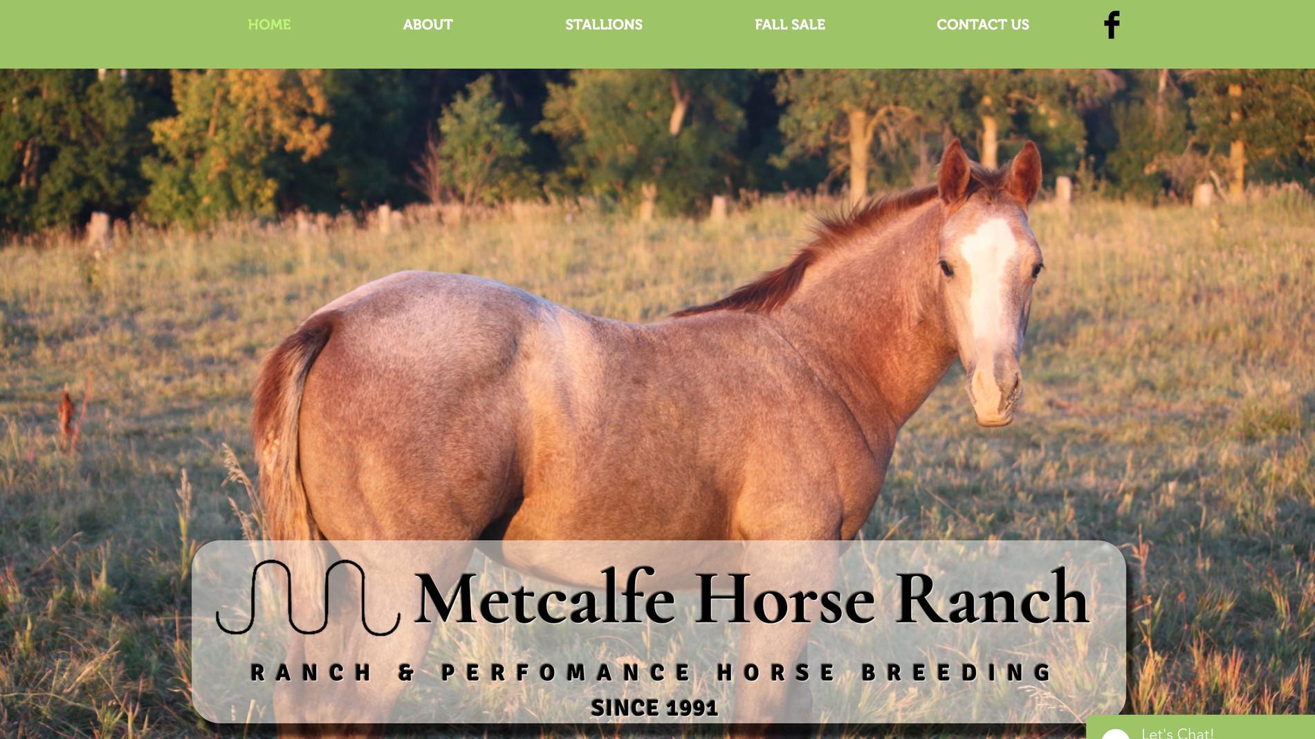 Metcalfe Horse Ranch Website