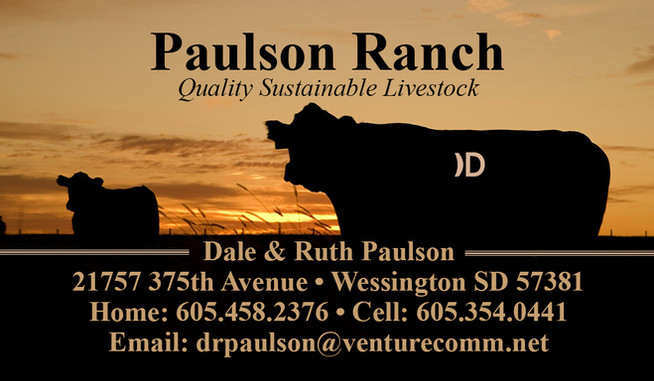 Dale Paulson Business Card-06.20164.jpg