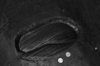 """Huella de Padmasambhava en la roca. Padmasambhava caves.  Tso Pema (Rewalsar) 🇮🇳   Photo © Jonathan Manrique Nossa  Este verso pertenece a un poema compuesto por Milarepa durante el siglo XI mientras vivia en una caverna / ermita, y el cual es popular en Tibet. Significa: Si soy capaz de vivir en esta ermita hasta la muerte, sin ser tentado a regresar al mundo, habré alcanzado mi meta espiritual""""   Lama Phudhock ha vivido como ermitaño por más de 50 años practicando el dharma en las cavernas donde Padmasambhava (encarnación mística de Buda) a quien se le atribuye la autoria del Bardo Thodol o libro tibetano de los muertos, ejecutó yoga tantrico, manifestó (siddhis) poderes místicos, unificó el budismo en el Tíbet. Allí en las hermitas viven también una comunidad de (Anis) monjas practicantes de una de las ramas (Nyingma) más místicas del budismo tibetano. Viven en el retiro."""