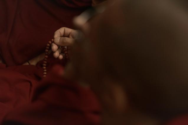"""Bodhisattva: Ser que, habiendo desarrollado la mentalidad del despertar, dedica su vida a la tarea de alcanzar la budeidad (estado de Buddha) en beneficio de todos los seres sintientes.   """"Como resultado de la virtud, permaneceré en el espacio, fragante y fresco corazón de una flor de loto, Mi fulgor será alimentado por el dulce discurso de los conquistadores, Mi forma gloriosa florecerá de un loto abierto por la luz del poderoso, Y, como bodhisattva, permaneceré en la presencia de los conquistadores""""   """"As a result of virtue, I shall dwell in the spacious, fragrant and cool heart of a lotus flower, My radiance will be nourished by the food of the conquerors sweet speech, My glorious form will spring from a lotus unfolded by the mighty one`s light, and, as a Bodhisattva, I shall abide in the presence of the conquerors""""   Shantideva / A guide to Bodhisattva's way of life VII 44  Photo © Jonathan Manrique Nossa. Mcleoganj, Daramshala."""