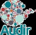 Audir%202020%20logo_edited.png