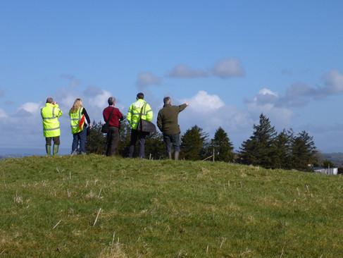 M5 multi-disciplinary on site consultation