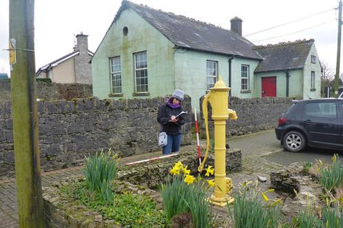 Ballyroan village, Co. Laois
