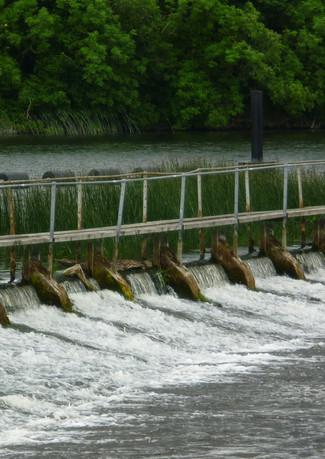 Meelick Wier, River Shannon