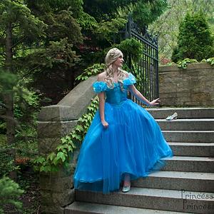 2015 Cinderella and Fairy Godmother