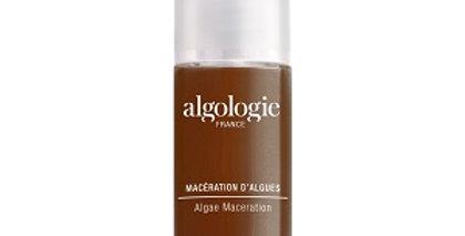 Algae Maceration 30ml