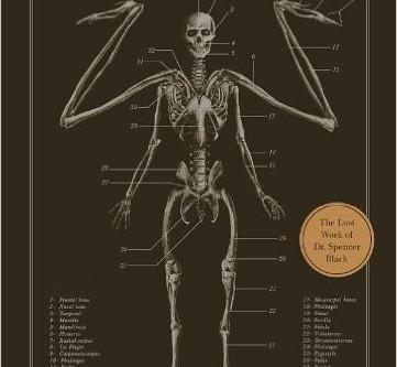 A Writer's Bookshelf:  The Resurrectionist, by E. B. Hudspeth