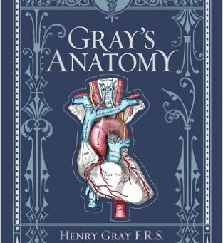 A Writer's Bookshelf:  Gray's Anatomy