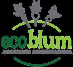 EcoBlum-Logo-Transp_edited.png