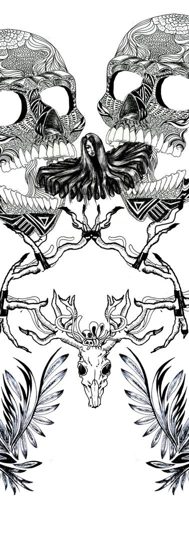 Ilustração 1