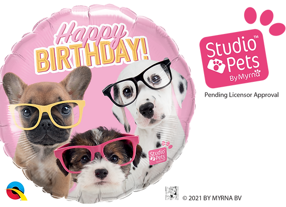 HB Studio Pets Dogs with Glasses- Small Qualatex Foil