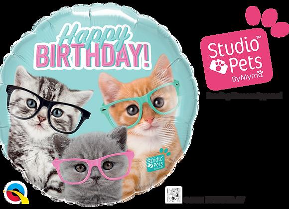 HB Studio Pets Kitten with Glasses- Small Qualatex Foil