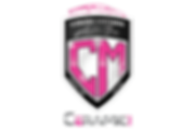Cosmo Motors Auto Spa Logo