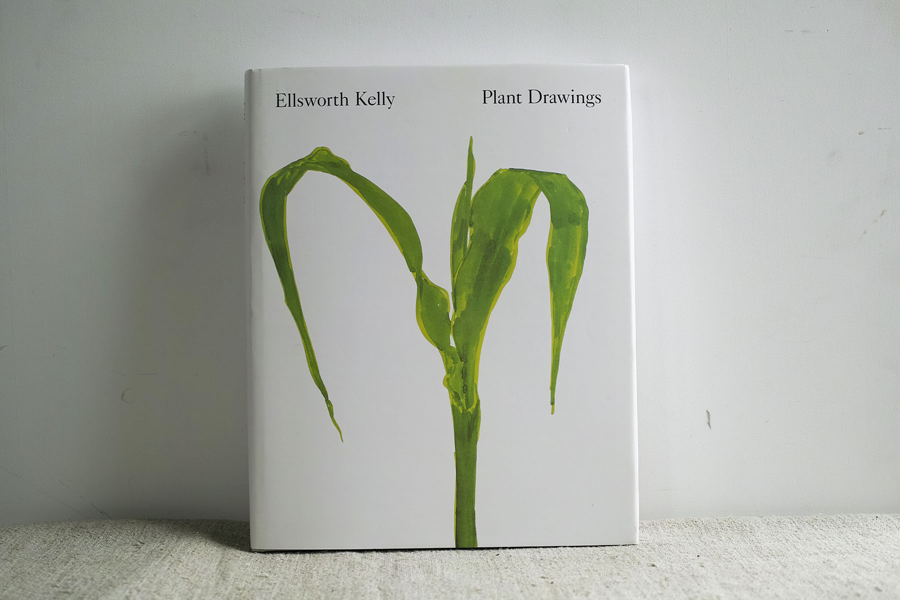 ek_plant_d_1.jpg