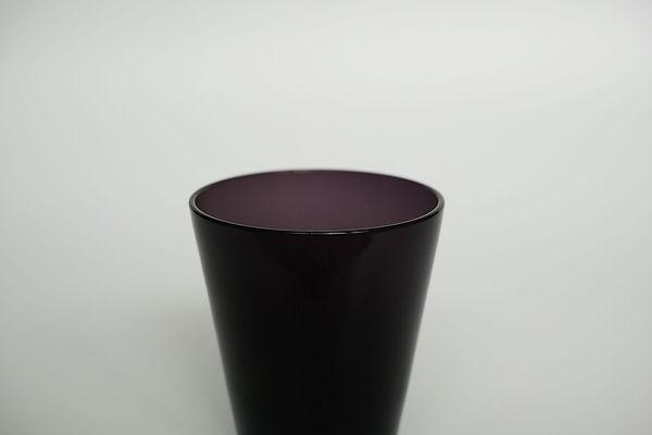 pcup_2.jpg