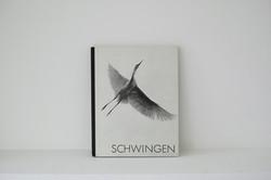 schwingen_1