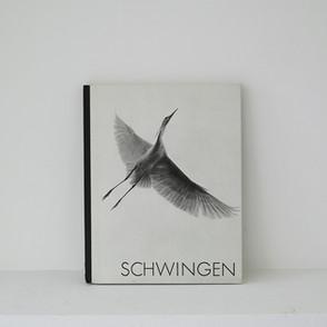 schwingen_1.jpg