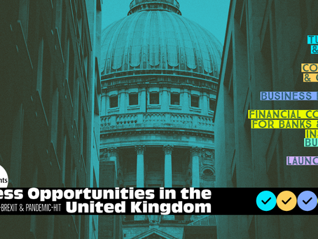 Attractive Business Opportunities for professional Accountants in the United Kingdom