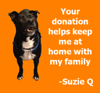 Suzie Q - Keep me at home.png