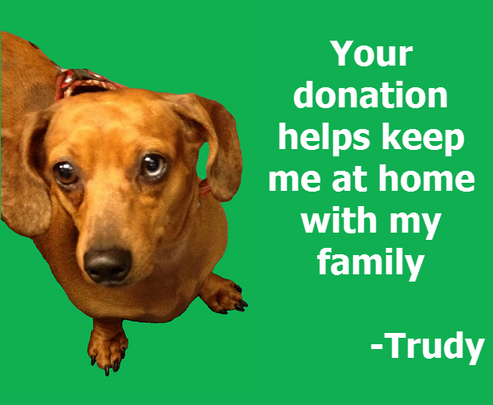 Trudy - Keep me at home.png
