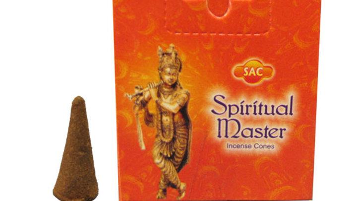 Maitre spirituel Sac incense Cones