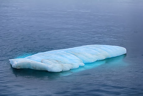Typical growler (small flat iceberg) in waters of the Barents sea is real danger to navigation (90 p