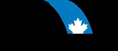 Standard CNRI Logo.png
