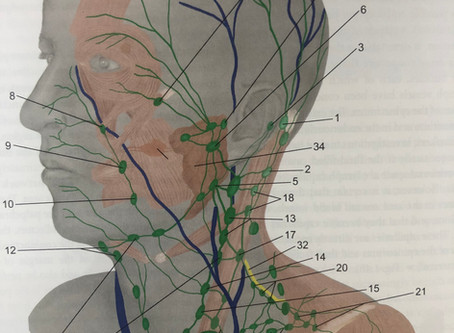 Why I add facial/neck drainage to every lymphatic massage.  This may be the best prevention of COVID