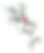 chrissypage tingaling-1_edited_edited_ed