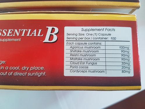 Essential B