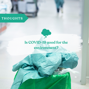 Is COVID-19 good for the environment? Is nature really healing?