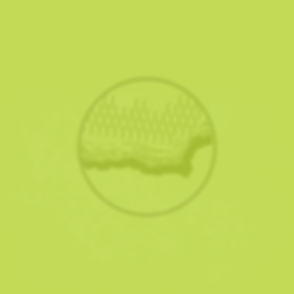 03Webicon-Algae.png