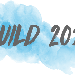 Monitoring and Evaluation: Build 2017