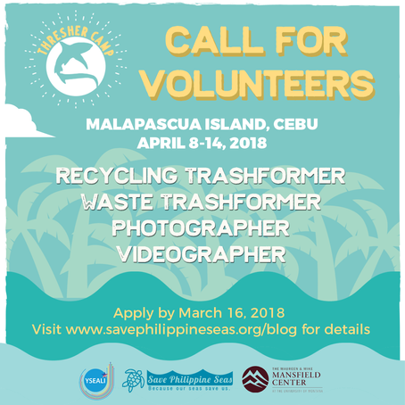 Call for volunteers: Thresher Camp in Malapascua Island