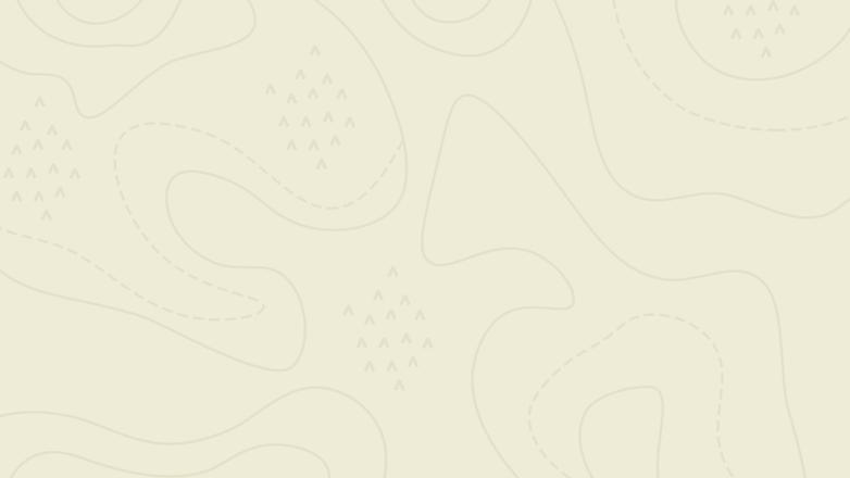 Map contour-beige.png