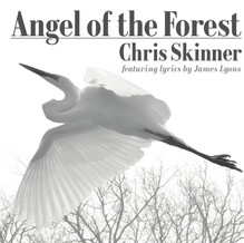 Angel of the Forest / 2015