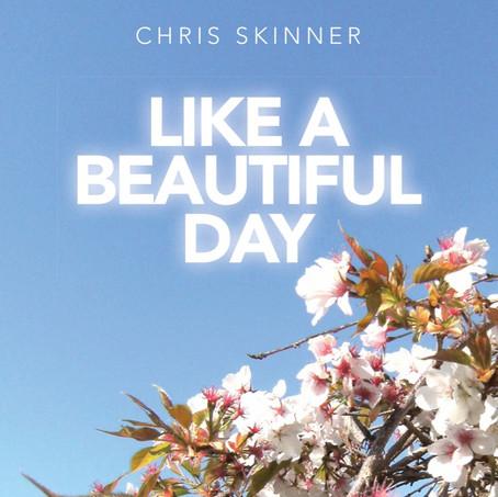 Like A Beautiful Day / 2010