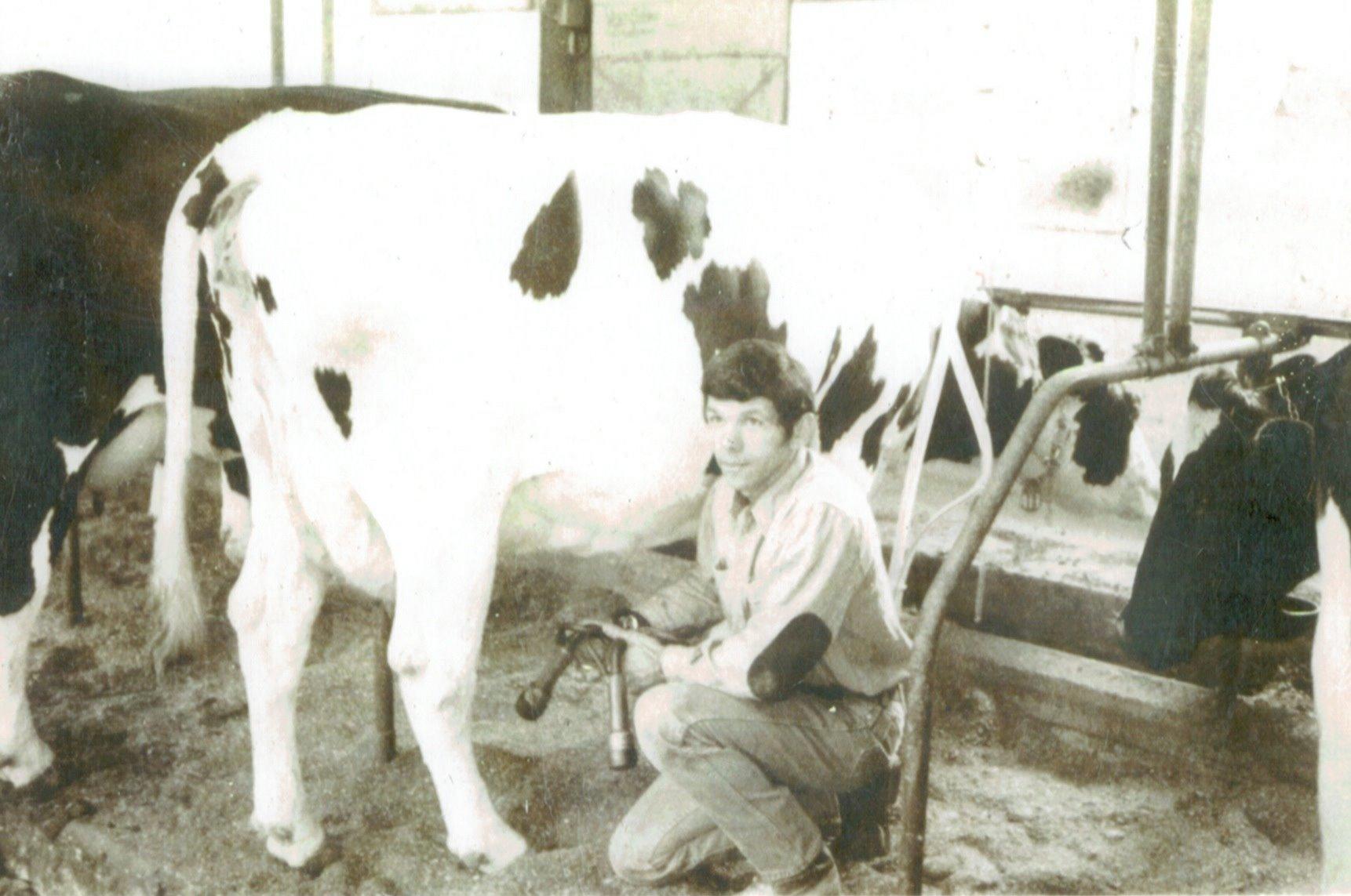 Tom McCarty Milking (2).jpg