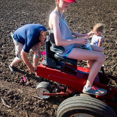 Planting Pumpkins, Gourds and Squash