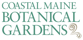 CMBG19-Logo_2c.png