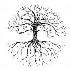 arbol vida 3.jpg