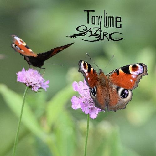 Schmetterling  doppelt