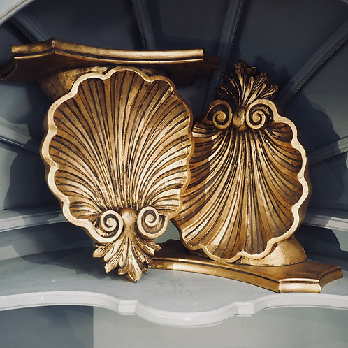 Scallop Shell Wall Shelves